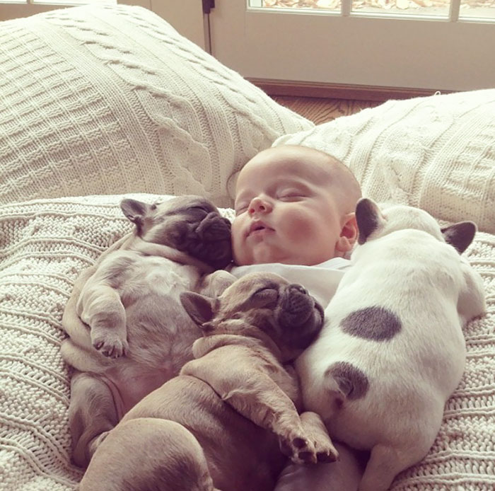 Cutest Babies Images With Puppy Dogs (13)