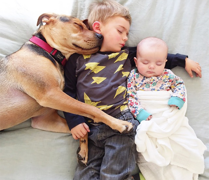 Cutest Babies Images With Puppy Dogs (14)
