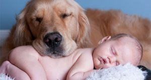 Cutest Babies Images With Puppy Dogs (7)