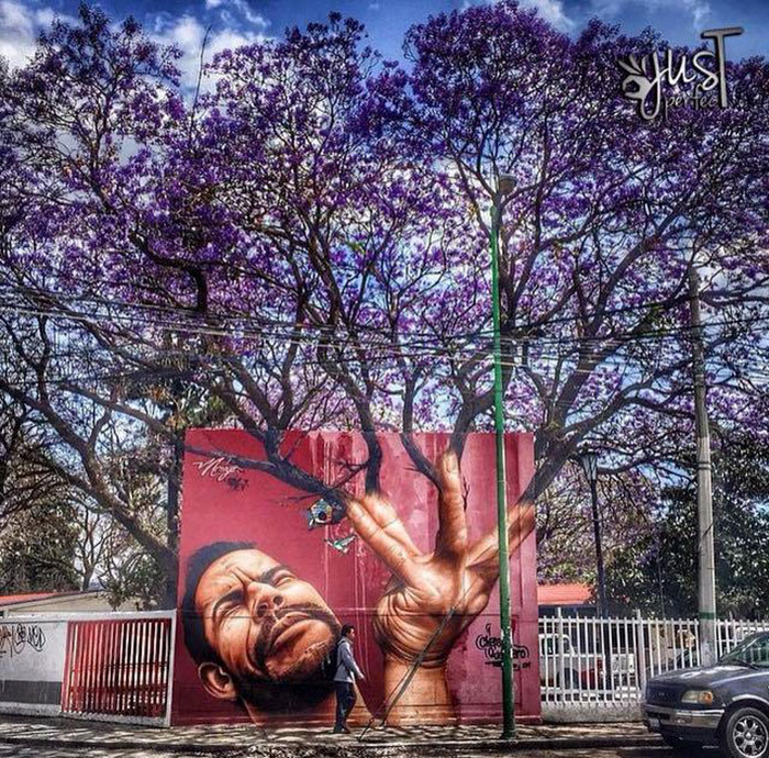 Fabulous And Stunning Nature Street Art (2)