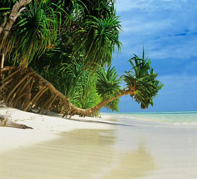 Komandoo Island - Maldives by Tibor Mester