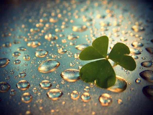 34 beautiful rain wallpaper (10)