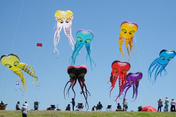 Berkeley Kite Festival, California