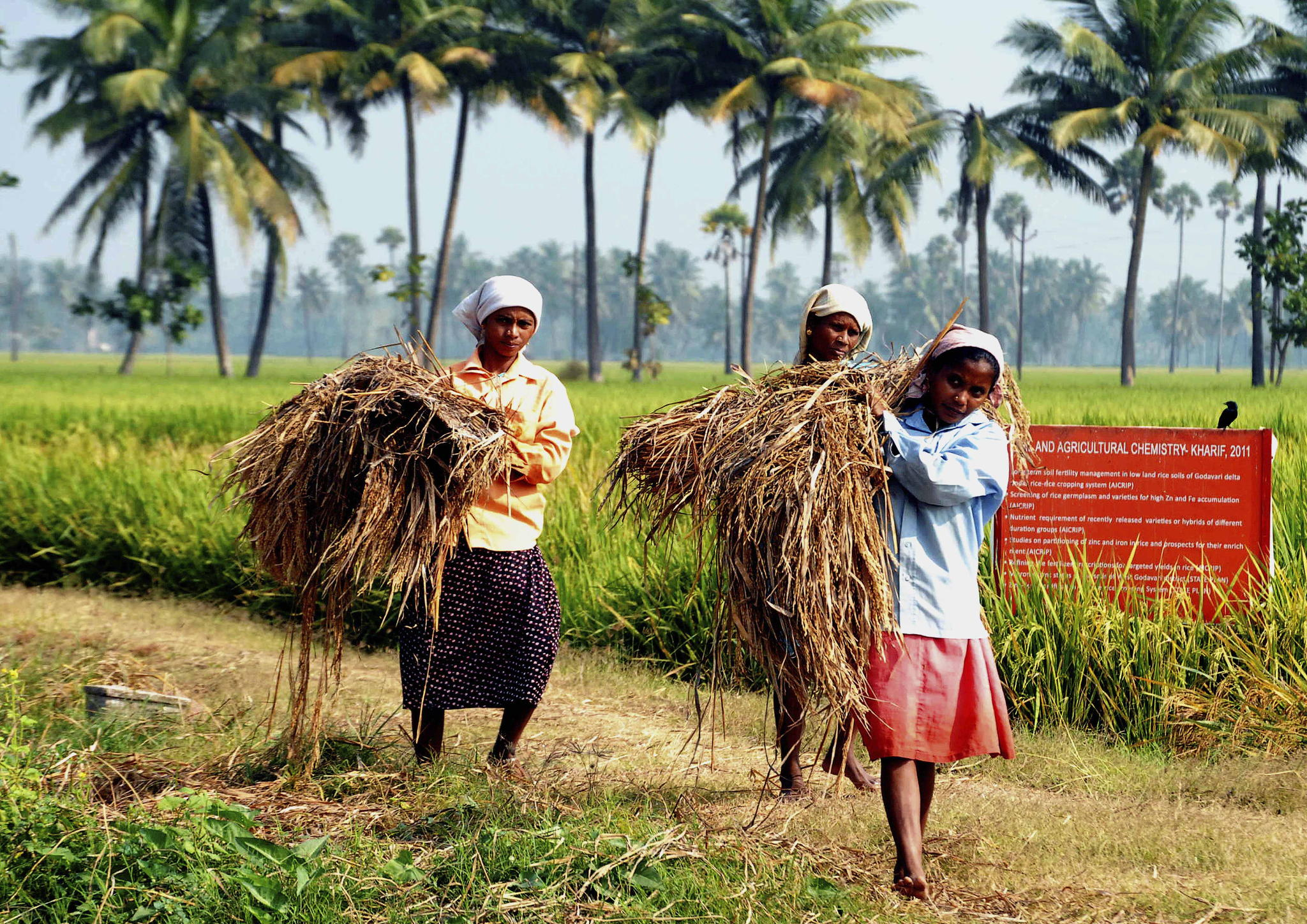 agricultural women by Samuel Johnson on 500px