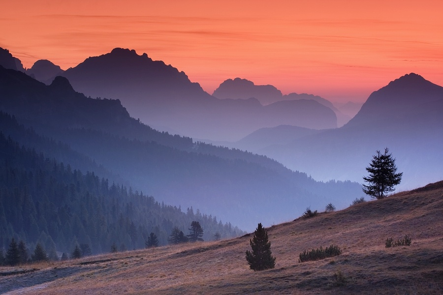 Morning in the Alps by Daniel Řeřicha on 500px