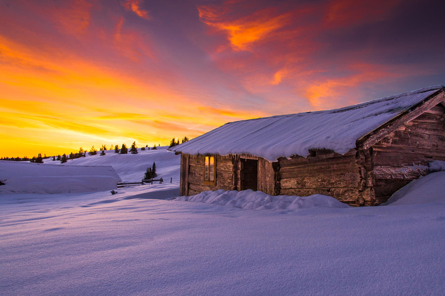 WINTER MORNING by Jørn Allan Pedersen on 500px