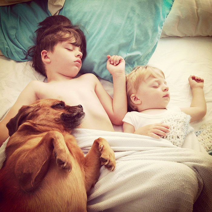 Adorable Photos kids with dog (14)