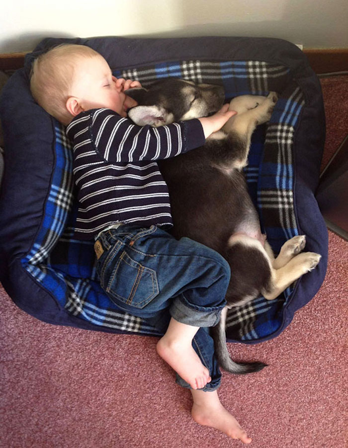 Adorable Photos kids with dog (18)