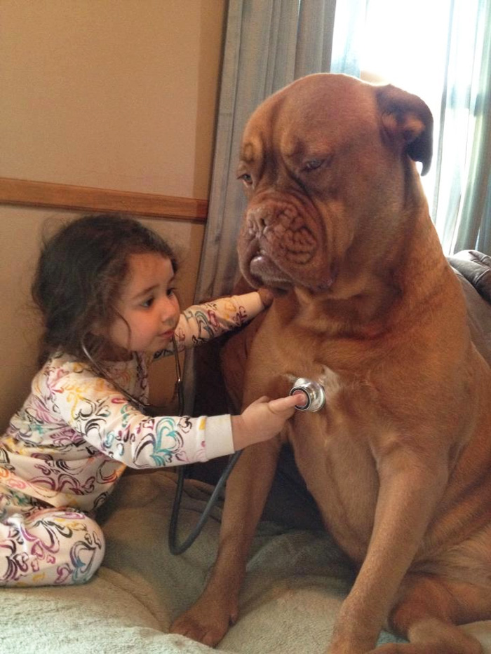 Adorable Photos kids with dog (19)