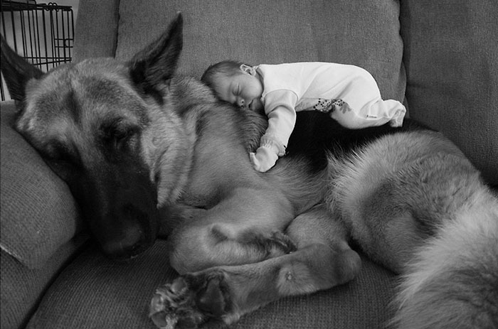Adorable Photos kids with dog (21)