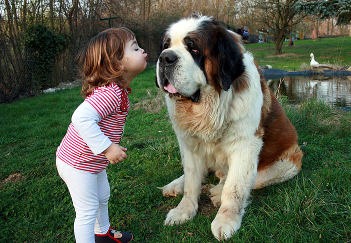 Adorable Photos kids with dog (4)