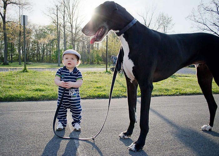 Adorable Photos kids with dog (7)