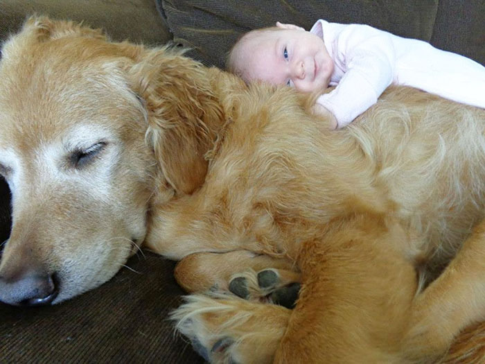 Adorable Photos kids with dog (9)