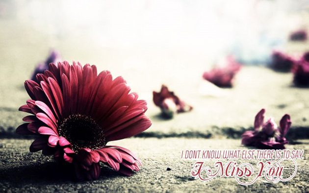 I Miss You HD Wallpapers (35)