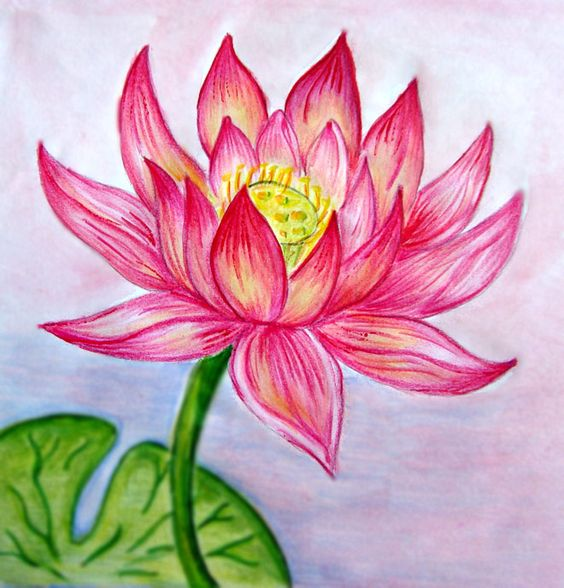 Beautiful Color Pencil Drawings (8)