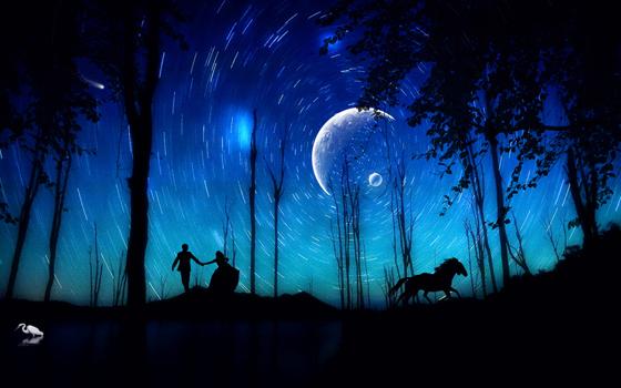 Beautiful Romantic Moonlight Wallpapers (16)