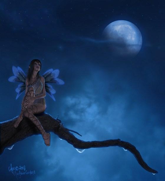 Beautiful Romantic Moonlight Wallpapers (23)