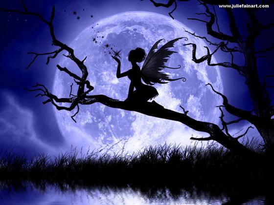 Beautiful Romantic Moonlight Wallpapers (26)