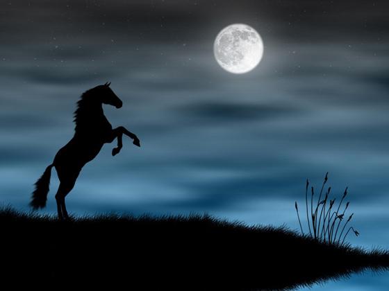 Beautiful Romantic Moonlight Wallpapers (9)