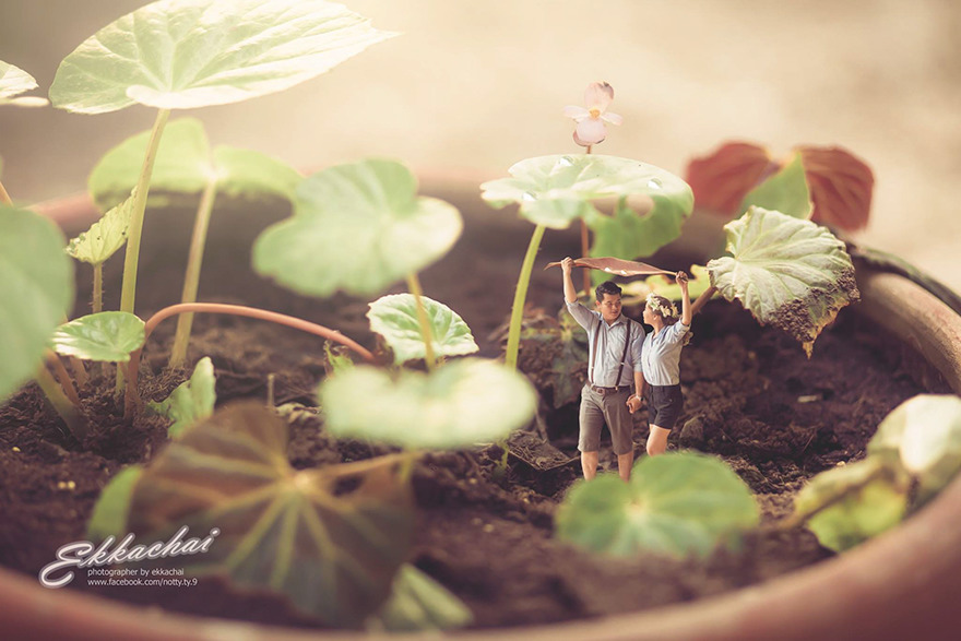 Clever Wedding Photographer Turns Couples Into Miniature People (4)