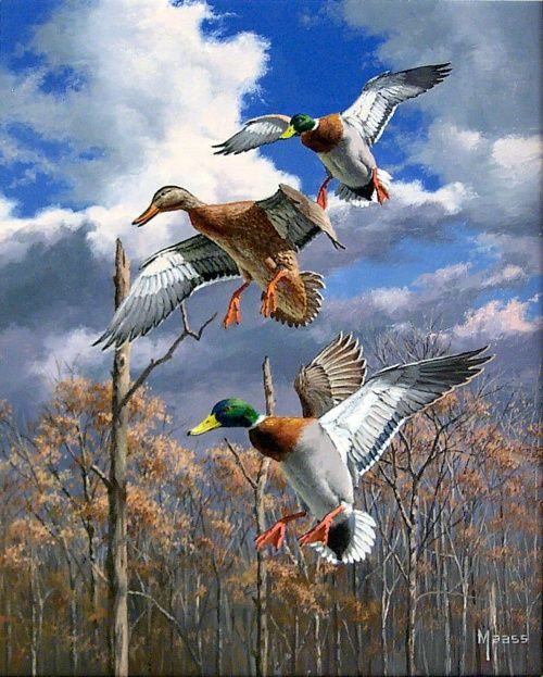Realistic Oil Painting of Birds (23)