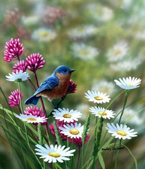 Realistic Oil Painting of Birds (24)