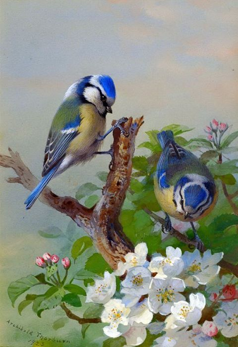 Realistic Oil Painting of Birds (25)