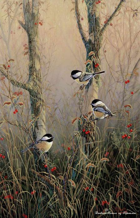 realistic oil painting of birds