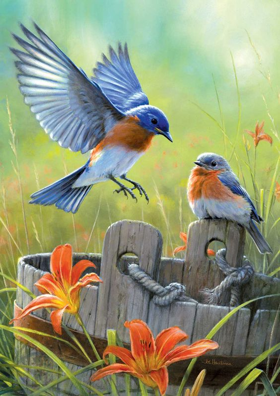 Realistic Oil Painting of Birds (5)