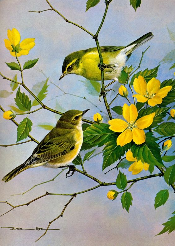 Realistic Oil Painting of Birds (6)