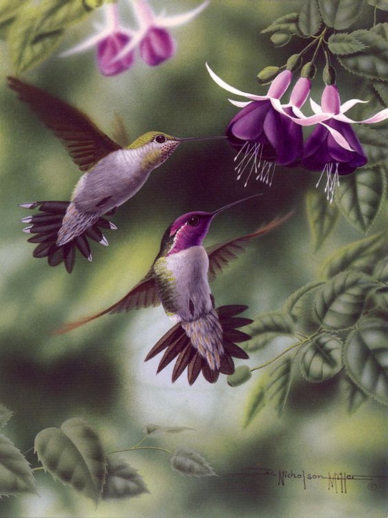 Realistic Oil Painting of Birds (8)