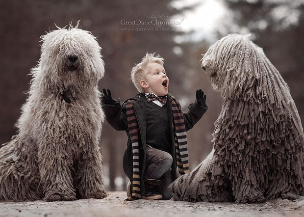 mighty-furry-dog-playing-with-a-kid-will-make-your-day-10