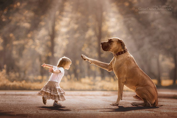 mighty-furry-dog-playing-with-a-kid-will-make-your-day-3