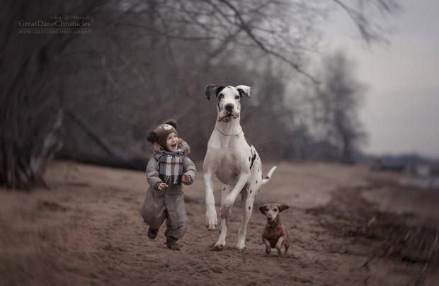 mighty-furry-dog-playing-with-a-kid-will-make-your-day-4