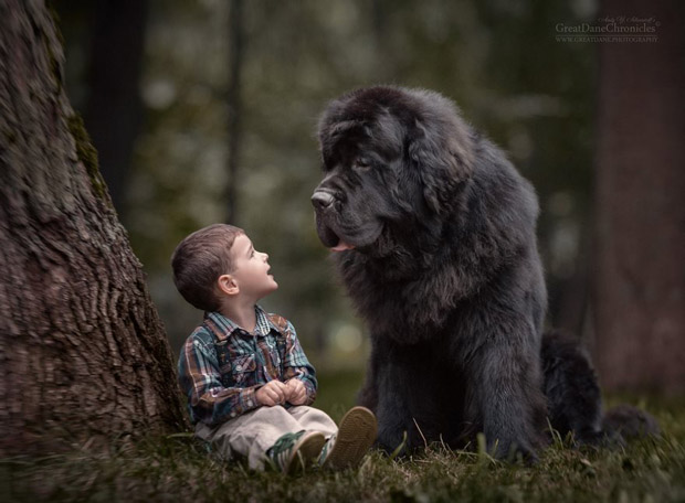 mighty-furry-dog-playing-with-a-kid-will-make-your-day-5