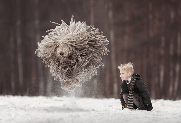 mighty-furry-dog-playing-with-a-kid-will-make-your-day-6