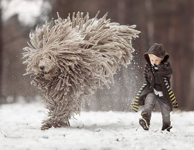 mighty-furry-dog-playing-with-a-kid-will-make-your-day-7