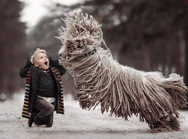 mighty-furry-dog-playing-with-a-kid-will-make-your-day-8