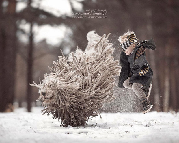 mighty-furry-dog-playing-with-a-kid-will-make-your-day-9