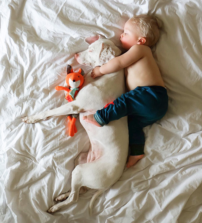Cutest Babies Images With Puppy Dogs (15)