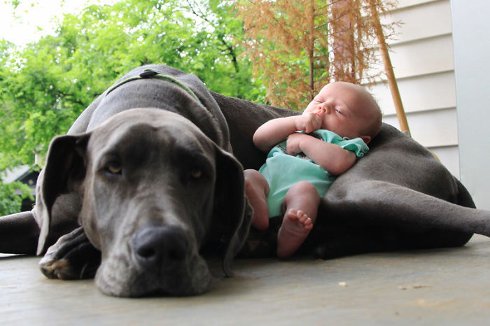 Cutest Babies Images With Puppy Dogs (3)