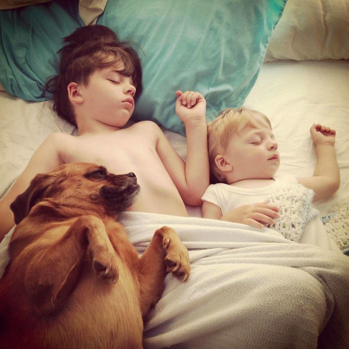 Cutest Babies Images With Puppy Dogs (4)
