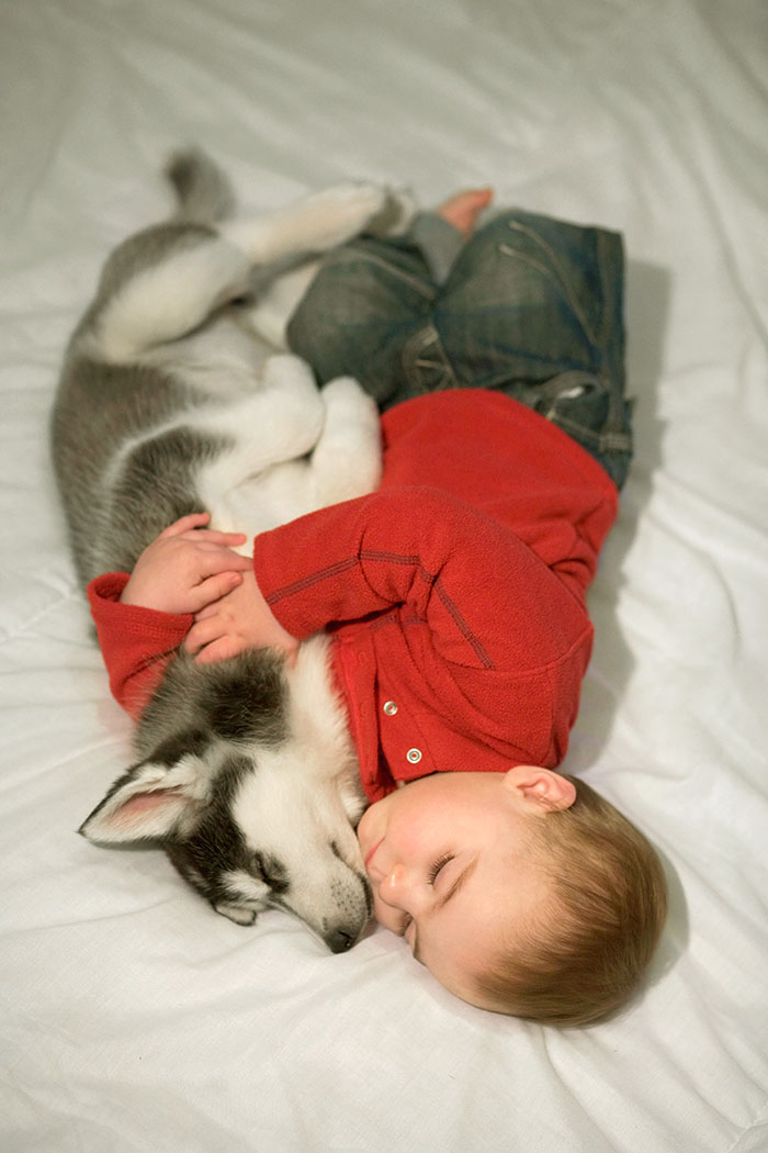 Cutest Babies Images With Puppy Dogs (6)