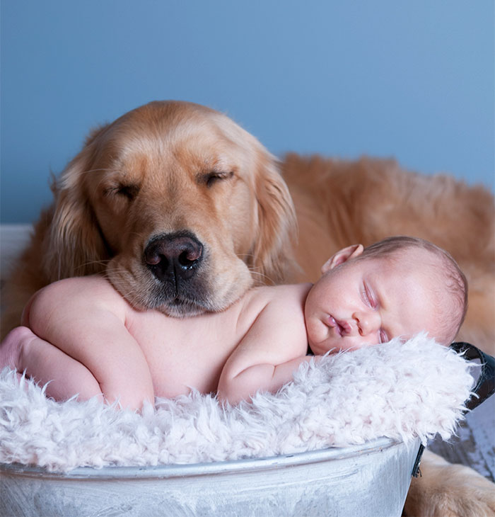 Cutest Babies Images With Puppy Dogs Great Inspire