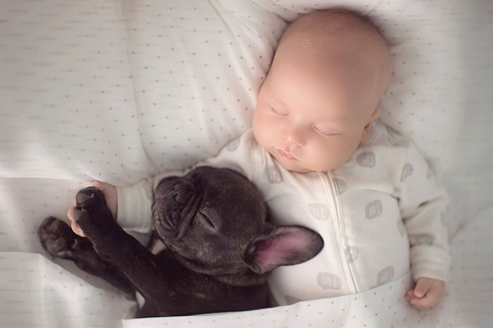 Cutest Babies Images With Puppy Dogs (8)